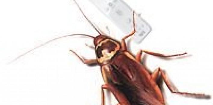La Wii atrae cucarachas (?)