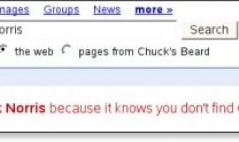 Ni Google busca a Chuck Norris