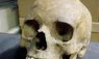 El arte y la muerte