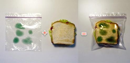 ¿Estás harto de que te roben el sandwich?