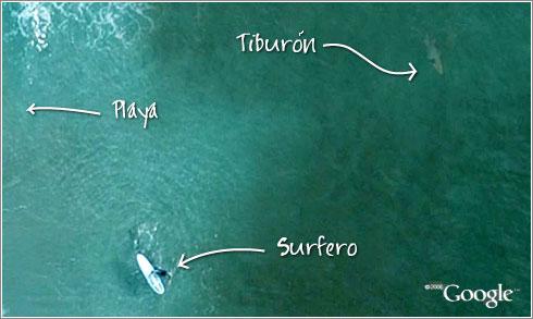 Un tiburón en Google Maps